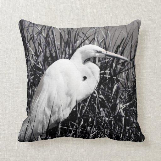 Egret blanco en el bw de las cañas cojín
