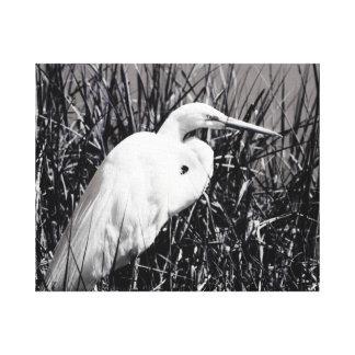 Egret blanco en el bw de las cañas impresión en tela