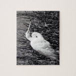 Egret blanco en el bw de las cañas puzzle con fotos