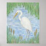 Egret blanco en la impresión del arte del pantano  posters