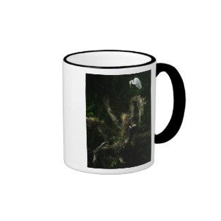 Egret blanco en la taza del roble