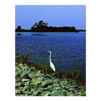 Egret blanco en línea rocosa de la orilla plantilla de membrete