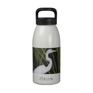 Egret blanco en pájaro que vadea de la garza del botella de beber