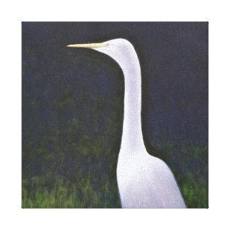 Egret blanco impresiones en lona estiradas
