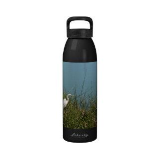 Egret blanco que se coloca en agua de la hierba w botallas de agua