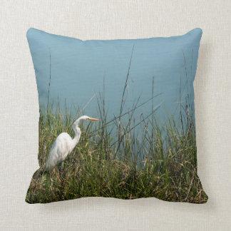 Egret blanco que se coloca en agua de la hierba w cojines
