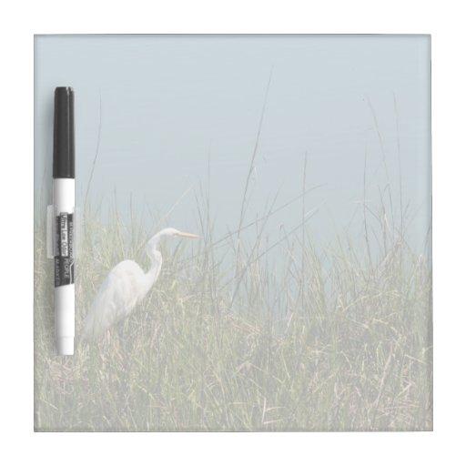 Egret blanco que se coloca en agua de la hierba w pizarras blancas