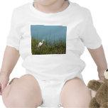 Egret blanco que se coloca en agua de la hierba w trajes de bebé