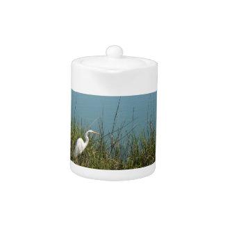 Egret blanco que se coloca en agua de la hierba w