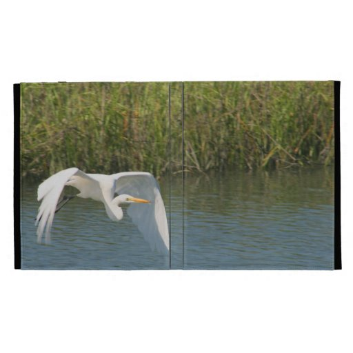 Egret blanco que vuela sobre hierba del agua