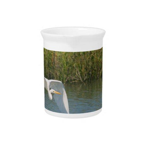 Egret blanco que vuela sobre hierba del agua jarrones