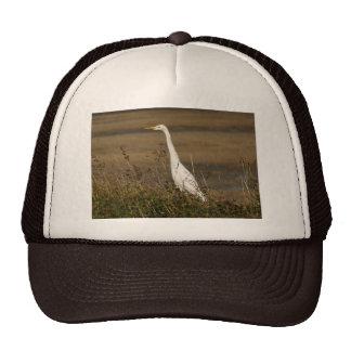 Egret de ganado gorros bordados