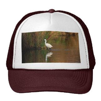 Egret de la caza gorras de camionero