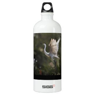 Egret Defending Her Young Aluminum Water Bottle