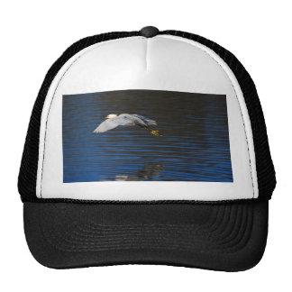 Egret del vuelo gorra