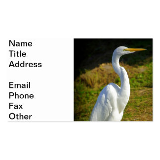 Egret Double-Sided Standard Business Cards (Pack Of 100)