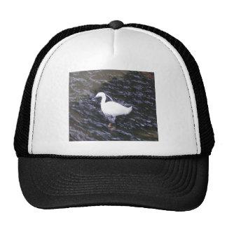 Egret en el río fluído gorro de camionero