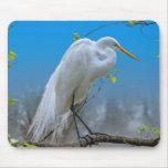 Egret en un árbol Mousepad Tapete De Ratones