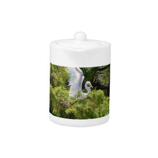 Egret en un árbol