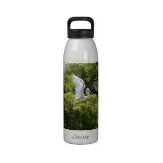 Egret en un árbol botallas de agua