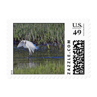 Egret Fishing Postage Stamps