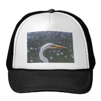 egret gorras