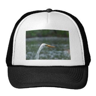 egret gorro