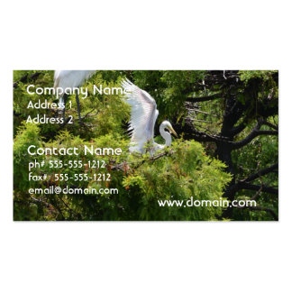 Egret in a Tree Business Cards