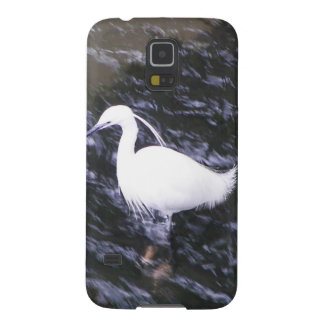 Egret in fast flowing river case for galaxy s5