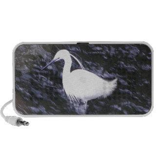 Egret in fast flowing river portable speaker