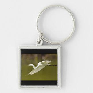egret in flight keychain