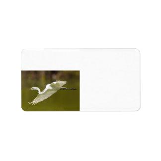 egret in flight label