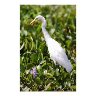 Egret in the Grass Stationery