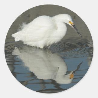 Egret in the Lake 3 Sticker