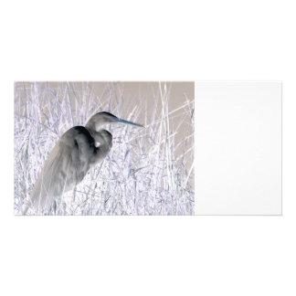 egret invert bw haunted photo card