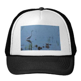 Egret-Lago Cargellico Gorros Bordados