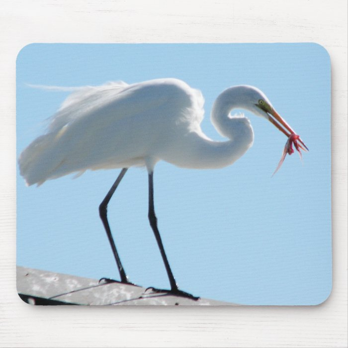 Egret Lunch Mouse Pad