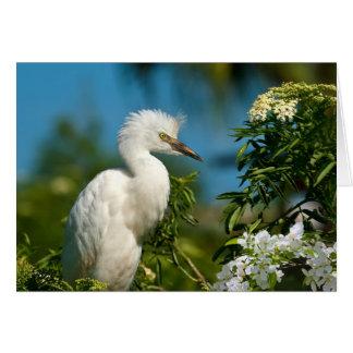 Egret nevado con las flores Notecard Tarjeta Pequeña