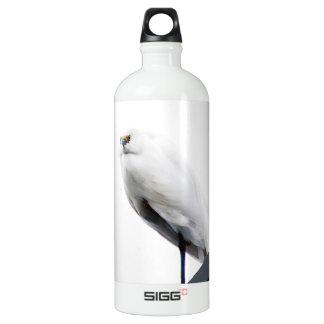 Egret nevado elegante y hermoso