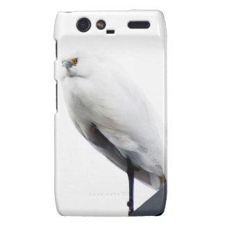 Egret nevado elegante y hermoso droid RAZR funda