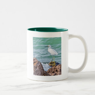 Egret nevado en las rocas taza de café