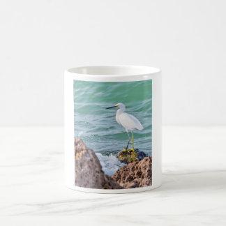 Egret nevado en las rocas tazas de café