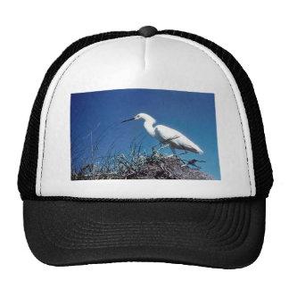 Egret nevado gorro