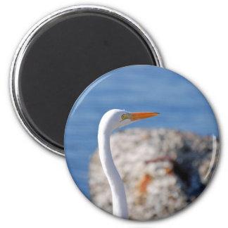 Egret nevado imán redondo 5 cm