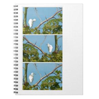 Egret nevado libro de apuntes con espiral
