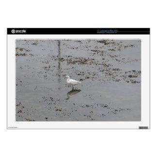 Egret nevado portátil calcomanía