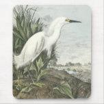 Egret nevado tapete de raton
