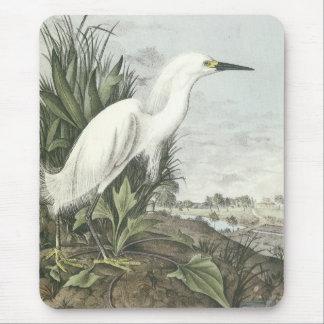 Egret nevado tapetes de raton