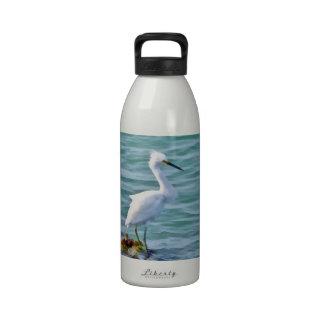Egret nevado botallas de agua