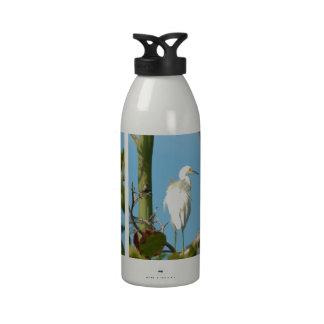 Egret nevado botellas de agua reutilizables